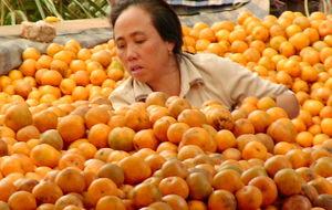 Appelsinselgersken