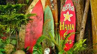 Aloha - Velkommen til Hawaii!