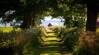 Sykkelferie på Gotland – Sveriges ultimate sommerøy