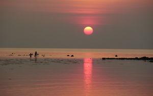 Badende i solnedgang
