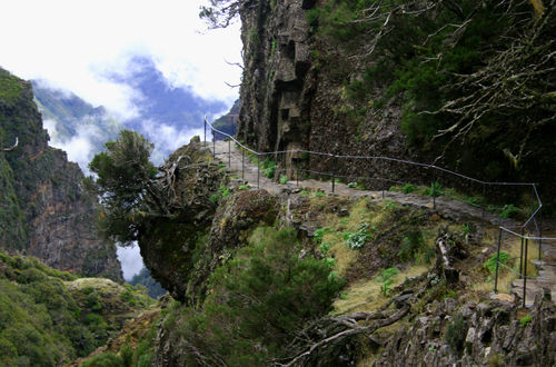 Madeira/ to the top!