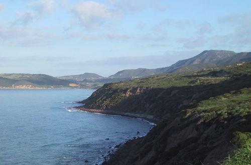 Den gröna kusten.