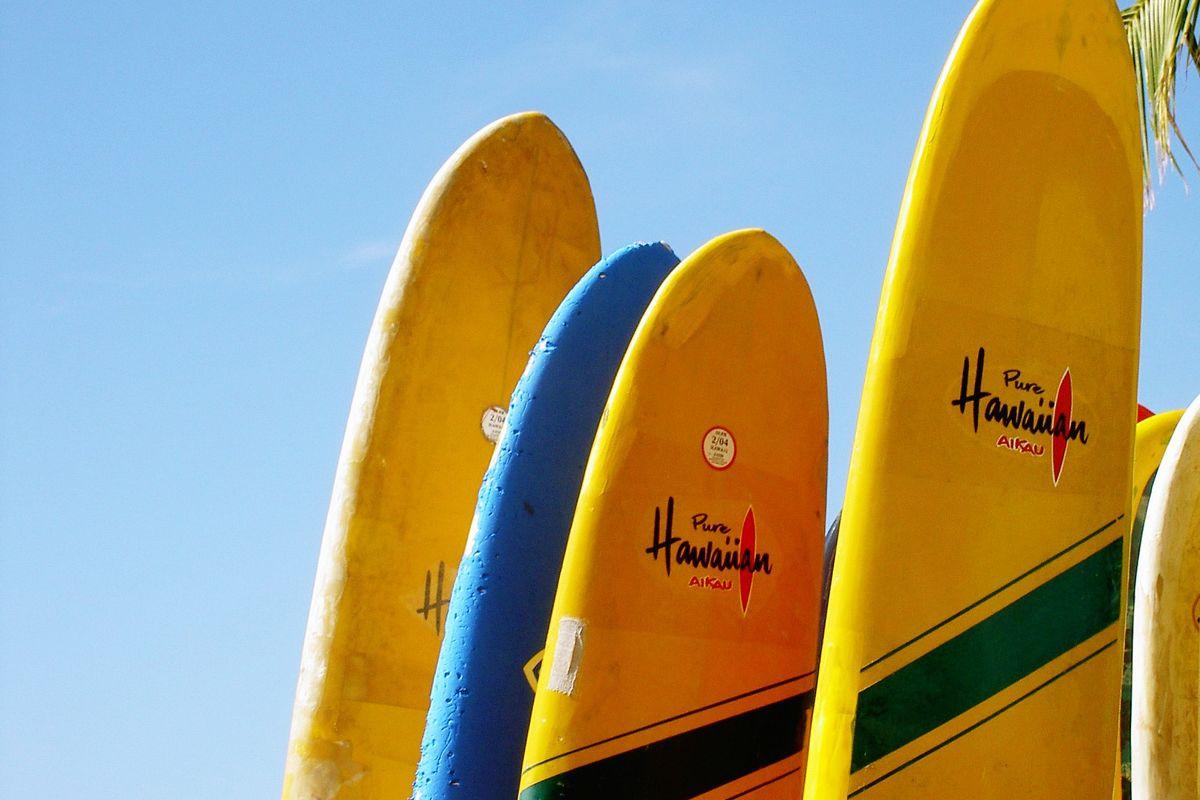 Surfinbrädor