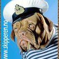 Skipper1