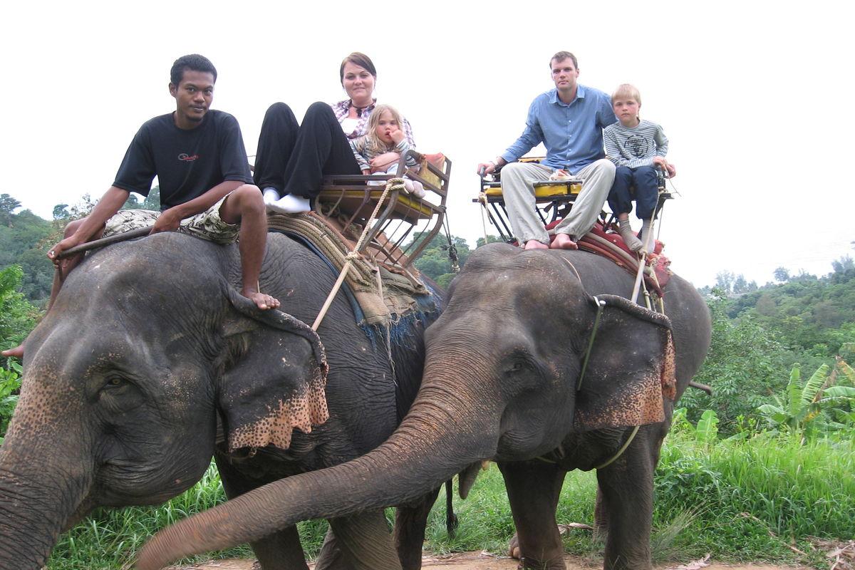 Elefant tracking